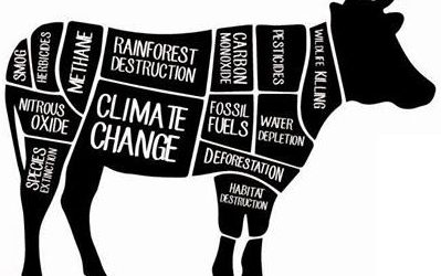 Ditch the almond milk: why everything you know about sustainable eating is probably wrong.